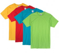 Bright Colors| Adult T-Shirt