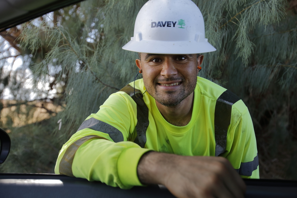 Man wearing hard hat and high visibility apparel